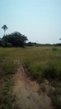 500 Acres of Land, Idiroko Road, Yewa South, Ogun, Commercial Land for Sale