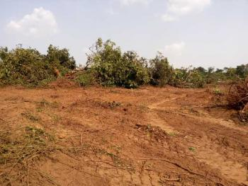 Plot of Land (with C of O), Plot 16, Block 26, Ayobo Residential Scheme, Ipaja-ayobo (with C of O), Ipaja, Lagos, Mixed-use Land for Sale