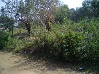 Over 30 Plots of Land, Behind Shelter View, Along Afao Road, Housing Estate, Ado-ekiti, Ekiti, Land for Sale
