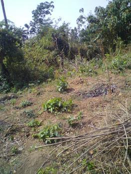 6 Plots of Land, Itamo Area, Moferere Embassy Island, Off Ajilosun, Ado-ekiti, Ekiti, Land for Sale