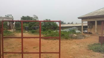 Acres of Farm Land, Obafemi Owode, Ogun, Commercial Land for Sale