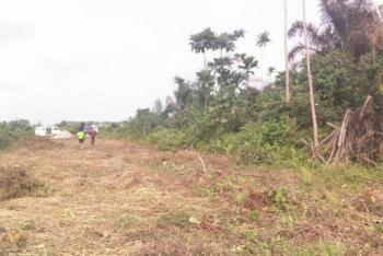 Land, New Akwa, Behind Police Cooperative Estate, By New Government House, Awka, Anambra, Mixed-use Land for Sale
