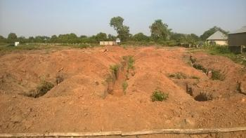100 Hectares of Land, Zone 6, Wuse, Abuja, Mixed-use Land for Sale