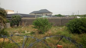 2plot of Land Facing Abraham Adesanya Express Road for Lease and Rent, Ajah, Lagos, Commercial Land for Rent