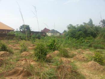 Land, Sammyspackle Road, Amawbia, Awka, Anambra, Mixed-use Land for Sale