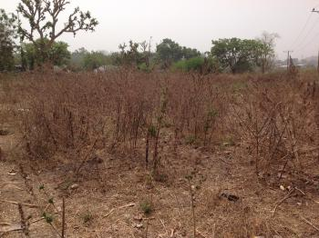 Well Located Commercial Plot of Land Measuring 5000sqm, Court Road, Life Camp, Gwarinpa, Abuja, Commercial Land for Sale