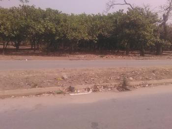 1600sqm Land Near Turkish Hospital, Turkish Namziye Hospital Road, Mbora, Abuja, Residential Land for Sale