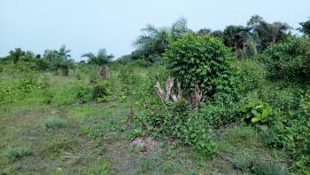 Corner Piece Four Plots, Behind Lga Secretariat Igando, Lekki Expressway, Lekki, Lagos, Mixed-use Land for Sale