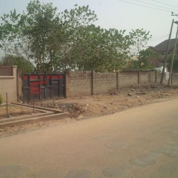 Fenced, Build-able, Livable Residential Land, Geese Street, Near Vio Office/ Nnpc Senior Staff Quarters, Mabuchi, Abuja, Residential Land for Sale