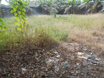 Land (3 Acres - 18 Plots) Can Be Sold per Acre, Near Alaba International Market, Alaba, Ojo, Lagos, Mixed-use Land for Sale