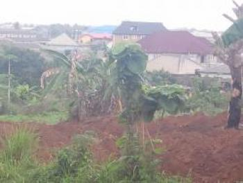 Land (duplicate Listing), Oko Afo, Badagry, Lagos, Land for Sale