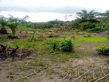 50 Acres of Land, Oko-orisan, Alonglekki/epe Expressway, Epe, Lagos, Residential Land for Sale