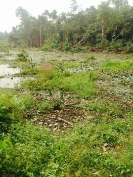 3580sqm of Land for Fish Pond, Ilara Epe, Epe, Lagos, Mixed-use Land for Sale