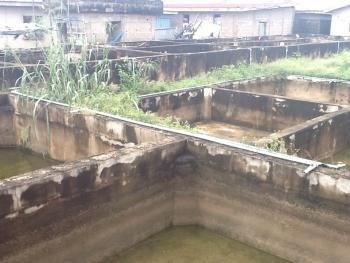 Quick Sale Multi Purpose Land (farming Or Building Conversion Hotel Etc.) 10 Plots, Agura Road, Igbogbo, Ikorodu, Lagos, Mixed-use Land for Sale