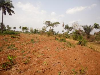 Acres of Land, Oko Afo Extension, After Agbara, Badagry, Lagos, Commercial Land for Sale