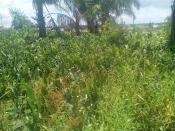 4 Plots of Land with a Storey Building, Back of Indomie Company, Winners ,ota Road, Sango Ota, Ogun, Residential Land for Sale