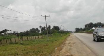 Tehilla Gardens Estate, Aba-owerri Road, Agbala – Owerri North Lga, Owerri, Imo, Residential Land for Sale