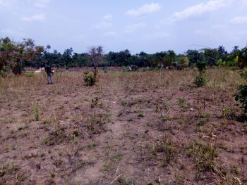 Up to 700 Plots of Land, Agu Awka Road, Back of Coca Cola, Awka, Anambra, Residential Land for Sale
