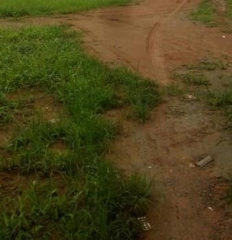 50 Plots of Land Umuapu,owerri-portharcourt Road, Umuapu, Umuagwo, Owerri-portharcourt Road, Ohaji/egbema, Imo, Mixed-use Land for Sale