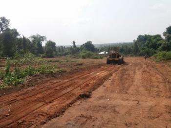 Virgin Land, Idi Mango Bus Stop, Off Nnpc Mosimi Shagamu - Ikorodu Road, Via Redeemer Schools, Sagamu, Ogun, Mixed-use Land for Sale