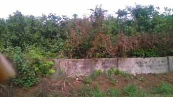 11 Plots of Land Protected with Dwarf Wall for All Forms of Commercial Investments, Okwu Urata Road, Behind Imo State University, Owerri, Imo, Land for Sale