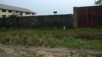an Irresistible Parcel of Land Fenced with Gate and Registered with The Govt of Imo State, Excellent for Hostel, Hotel Etc, Bishop Court Behind Imo State University, Owerri, Imo, Mixed-use Land for Sale