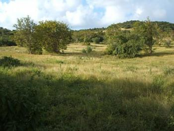 Land, Pyakasa District, Lugbe District, Abuja, Commercial Land for Sale