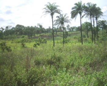 Land, Kwali District, Gwagwalada, Abuja, Commercial Land for Sale