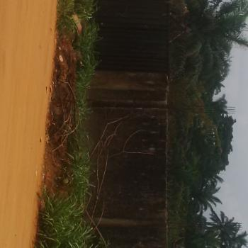 Well Situated 2 Plots of Land, Off Onitsha Road, Ogbaku, Mbaitoli, Imo, Residential Land for Sale