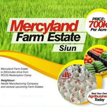 Farm Land Estate, Shiun, Abeokuta North, Ogun, Commercial Land for Sale