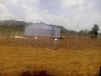 Nicely Built Poultry Farm with Buildings, Borehole and Properly Fenced, Gbau Village, After Aco Lugbe, Off Airport Road, Lugbe District, Abuja, Commercial Property for Sale