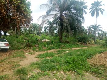 Well Located, Dry and Firm Land Measuring 1,386sqm, Ediene Abak, Off Abak Road, Uyo, Akwa Ibom, Land for Sale