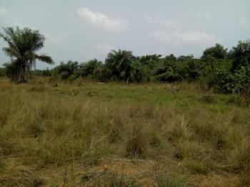 Own 750.533 Sqm Plot of Land with C of O, Behind Orchid Hotel, Lagos Island, Lagos, Residential Land for Sale
