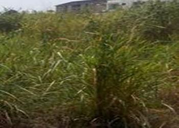 Vacant Land Measuring 15 Acres But Can Be Sold in Tranches, Ijegun, Satellite Town, Ojo, Lagos, Commercial Land for Sale