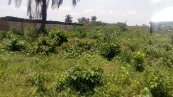 Mixed Use Land, Rumualogu, Choba, Port Harcourt, Rivers, Mixed-use Land for Sale