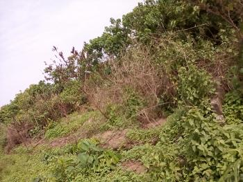 1 Plot of Land, Ozuoba, Off Nta Rd. Phc., Obio-akpor, Rivers, Residential Land for Sale