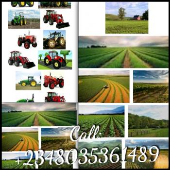 Farm Land, Abakaliki, Ebonyi, Commercial Land Short Let