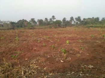 Very Cheap Farmland, Siun, 20 Mins After Redemption Camp, Rccg, Between Sagamu and Abeokuta, Mowe Ofada, Ogun, Tank Farm for Sale