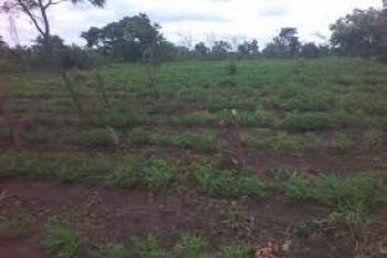 Acre, Ibarapa North, Oyo, Commercial Land for Sale
