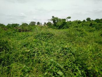 Acres and Plots of Lands, Papa Lantoro Before Ewekoro, Ewekoro, Ogun, Residential Land for Sale