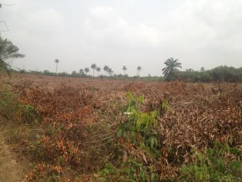 Dry Plots of Land, Iraye, Epe, Lagos, Residential Land for Sale