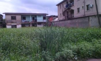 Half Plot of Land, Ago Palace, Isolo, Lagos, Residential Land for Sale