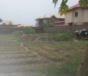 Bare Land Measuring 400 Square Meters with Certificate of Occupancy, Kemi Adekoya Street, Prayer Estate, Amuwo Odofin, Isolo, Lagos, Residential Land for Sale