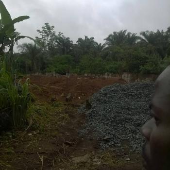 Buy and Build Land, Imo Poly Umuagwo, Ohaji/egbema, Imo, Mixed-use Land for Sale