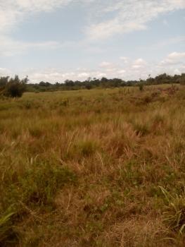 8 Acres of Dry Fenced Land with Gazette, Directly Facing Golf Road, Lakowe, Ibeju Lekki, Lagos, Mixed-use Land for Sale