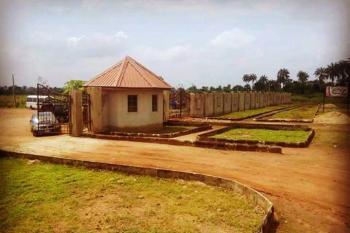 Havilah Park & Gardens, Nestle Plc Road, Mowe Ofada, Ogun, Land for Sale