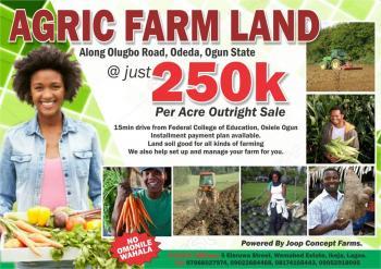 Arable Farm Land, Odeda, Ogun, Commercial Land for Sale