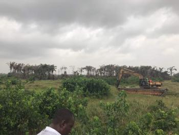 Over 150 Acres of Land, Off Uriba Road, Eleranigbe Road, Eleranigbe, Ibeju Lekki, Lagos, Mixed-use Land Joint Venture
