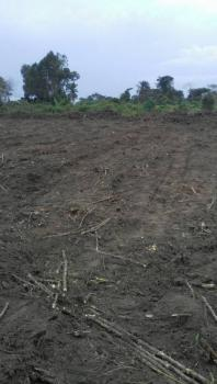 Lands for Sale in a Secured Environment, Deed of Assignment and Corner Plot Demarcation Price Included. Located Along Atan Road, Otta, Sango Ota, Ogun, Land for Sale