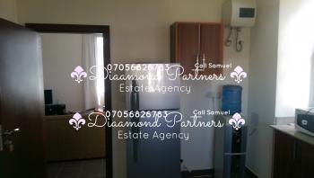Furnished 2 Bedroom, Banana Island, Ikoyi, Lagos, Flat for Rent